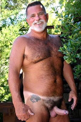 Gay Daddy Bears