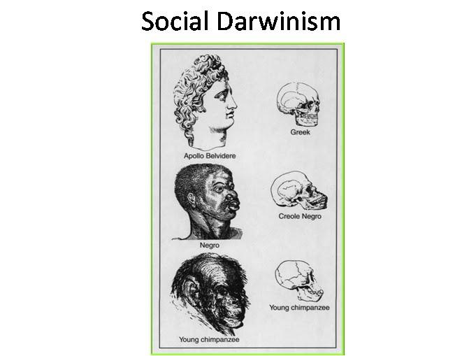 Racism & Social Darwinism in reguards to Imperialism at EssayPedia.com