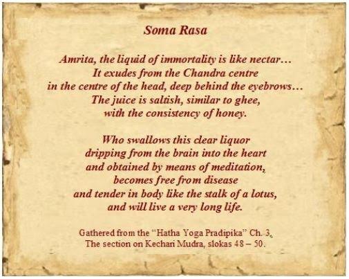 Soma+Rasa+Liquid+of+Immortality.JPG