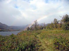 Rainbow over Saltery Lake Lodge