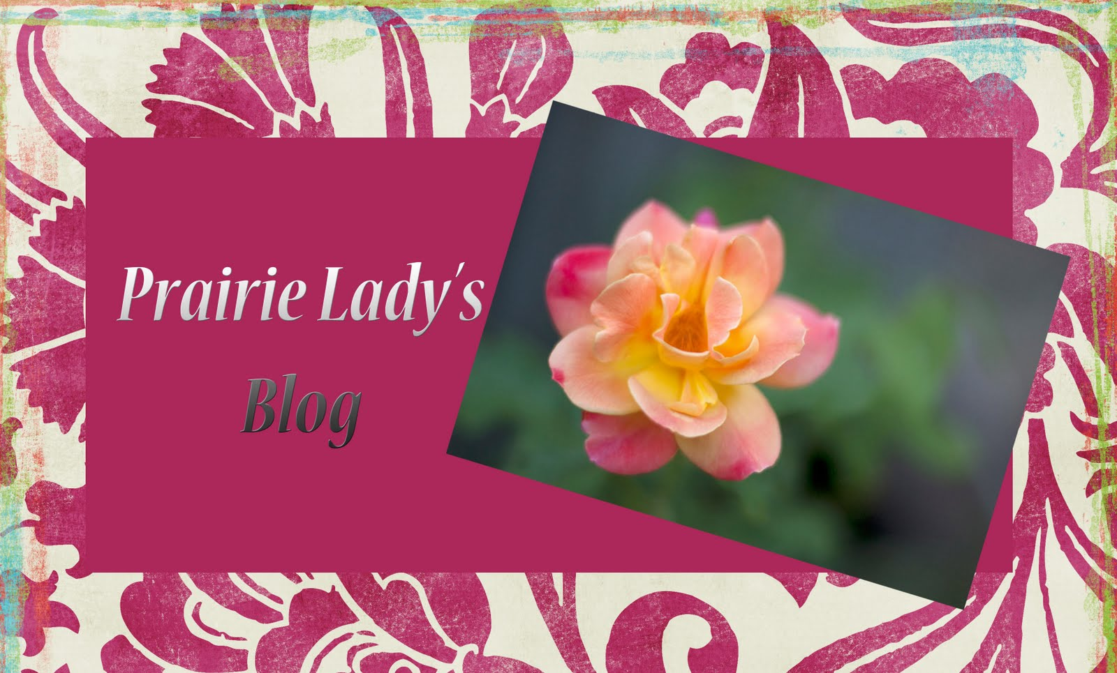 Prairie Lady's Blog