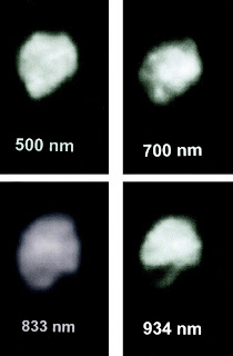 The asteroid Juno was photographed in 2003 with a special optics system on the Hooker telescope at the Mount Wilson Observatory