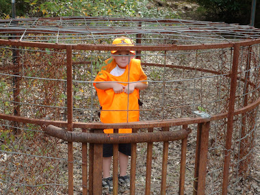 michael in hog trap in cooper wildlife management area
