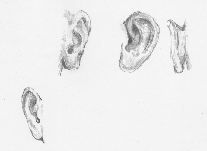 Diane Wright Sketches & Tutorials: Ear Sketches Ear Sketches