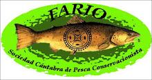 Fario