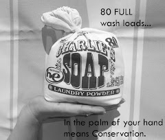 Charlie&#39;s Soap