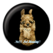 pin dog no monday