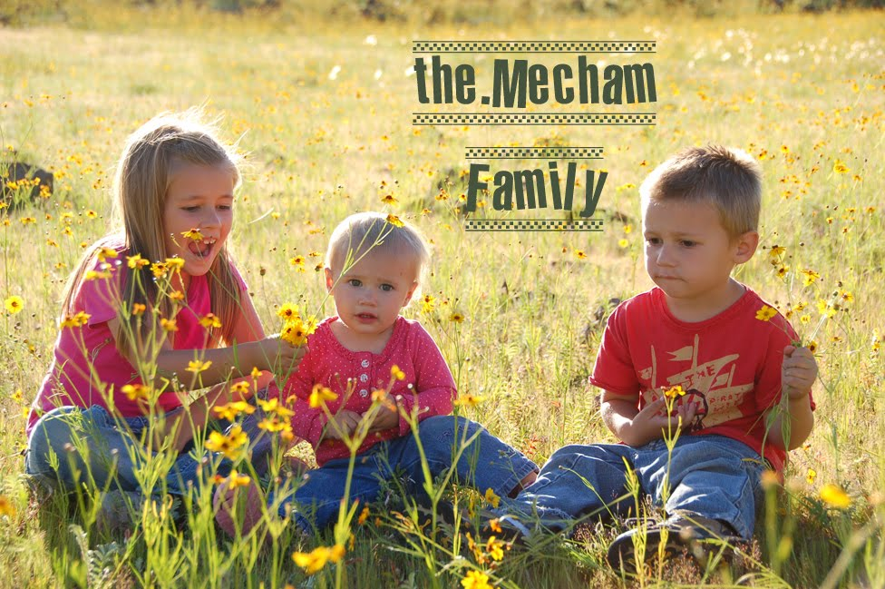 The Ben & Amberly Mecham Family