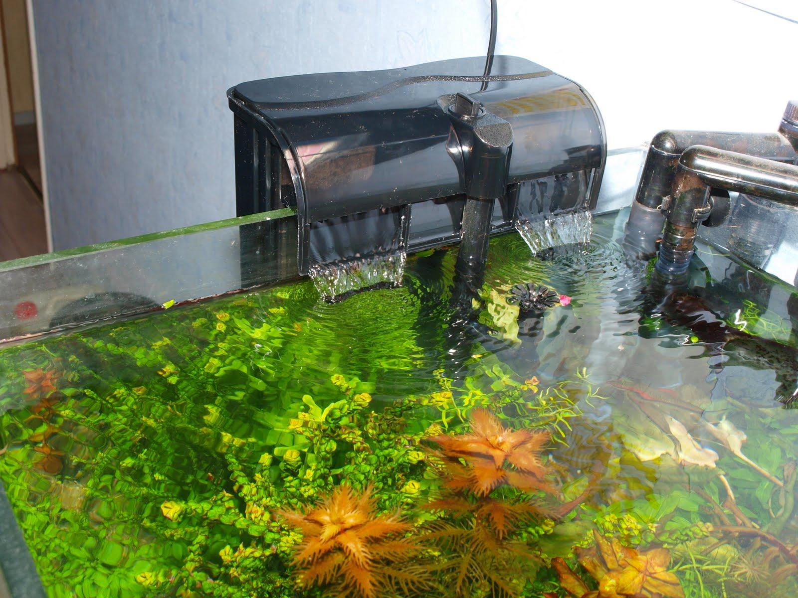 Водопад в аквариуме своими руками - это очень просто! 36
