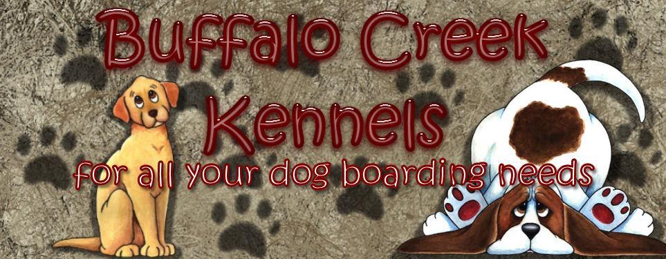 buffalo creek kennels