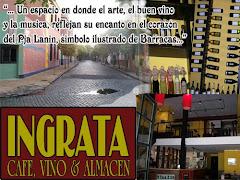 INGRATA BAR DE VINOS CAFE Y ALMACEN