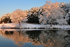 Iris Lake