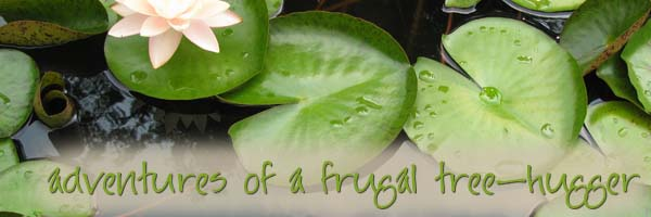adventures of a frugal treehugger
