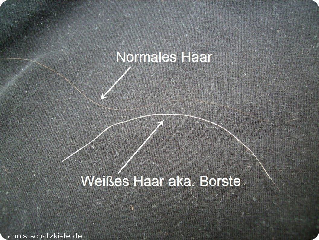 Einzelne lange weiße haare
