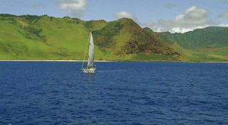 Pala Ferry (sea)