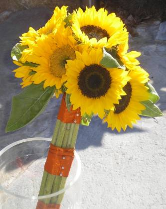 A sunflower handtied posy
