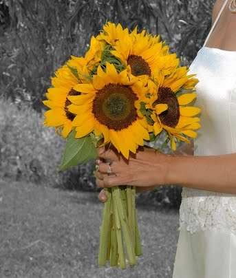 Deep yellow large sunflowers bridal bouquet