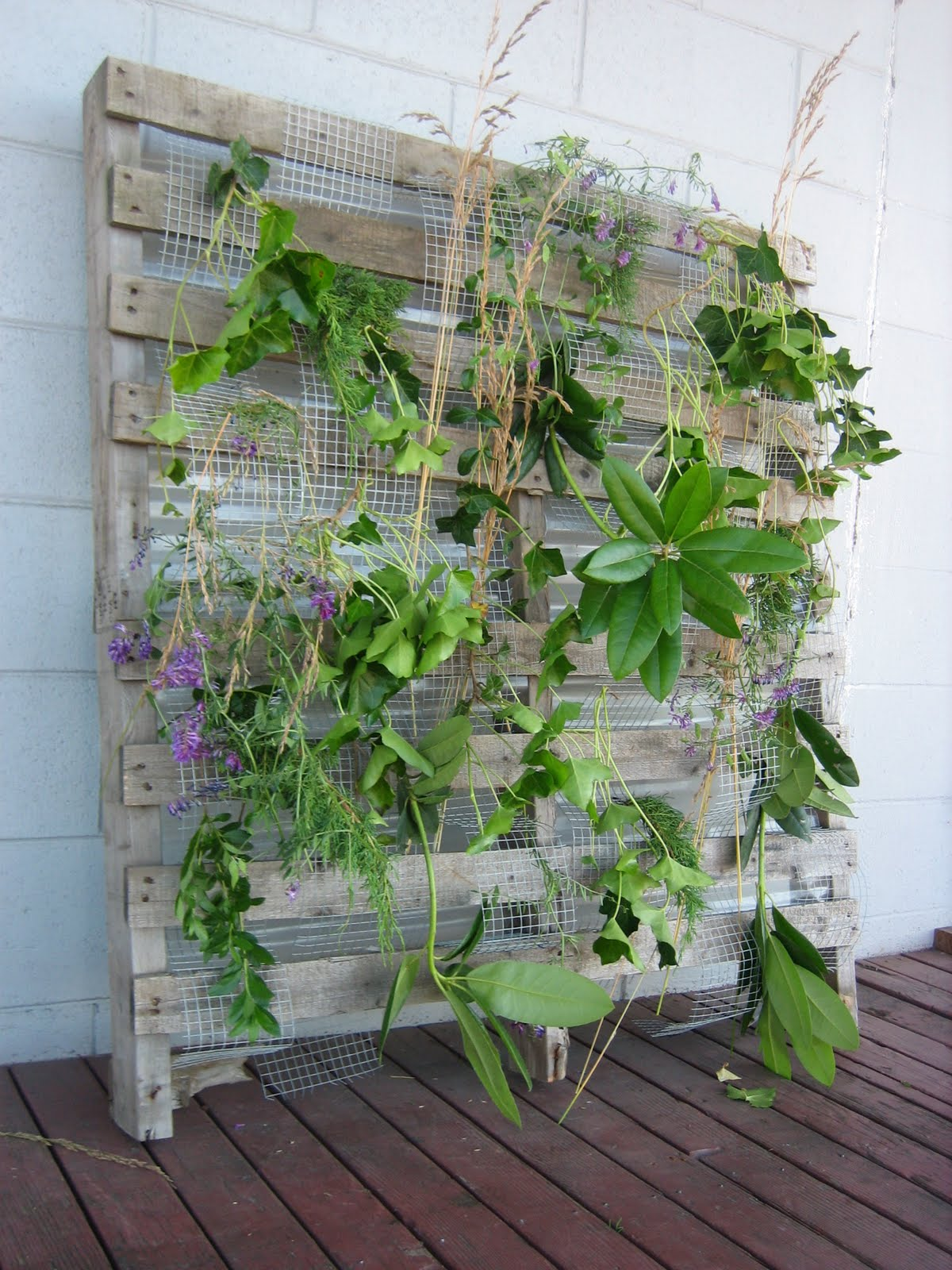 Horticultural building systems living wall trellis for Bois de palette