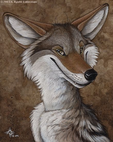 the different forms of the native american trickster stories Then go back through each story to find ideas and character types that are the     trickster tales about coyote,.