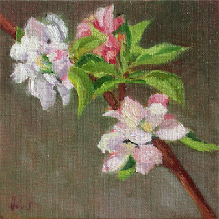 Apple blossoms by Liza Hirst