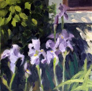 Irises in the Sun by Liza Hirst