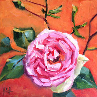 Rose de Jocelyn by Liza Hirst