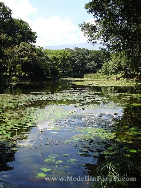 Medellin sitios turisticos for Centro de eventos jardin botanico