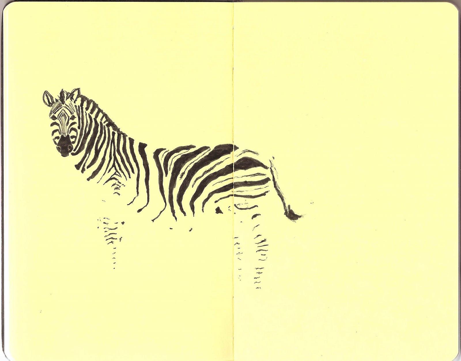 [zebrasketchbook]