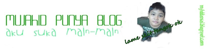 Mujahid punye blog