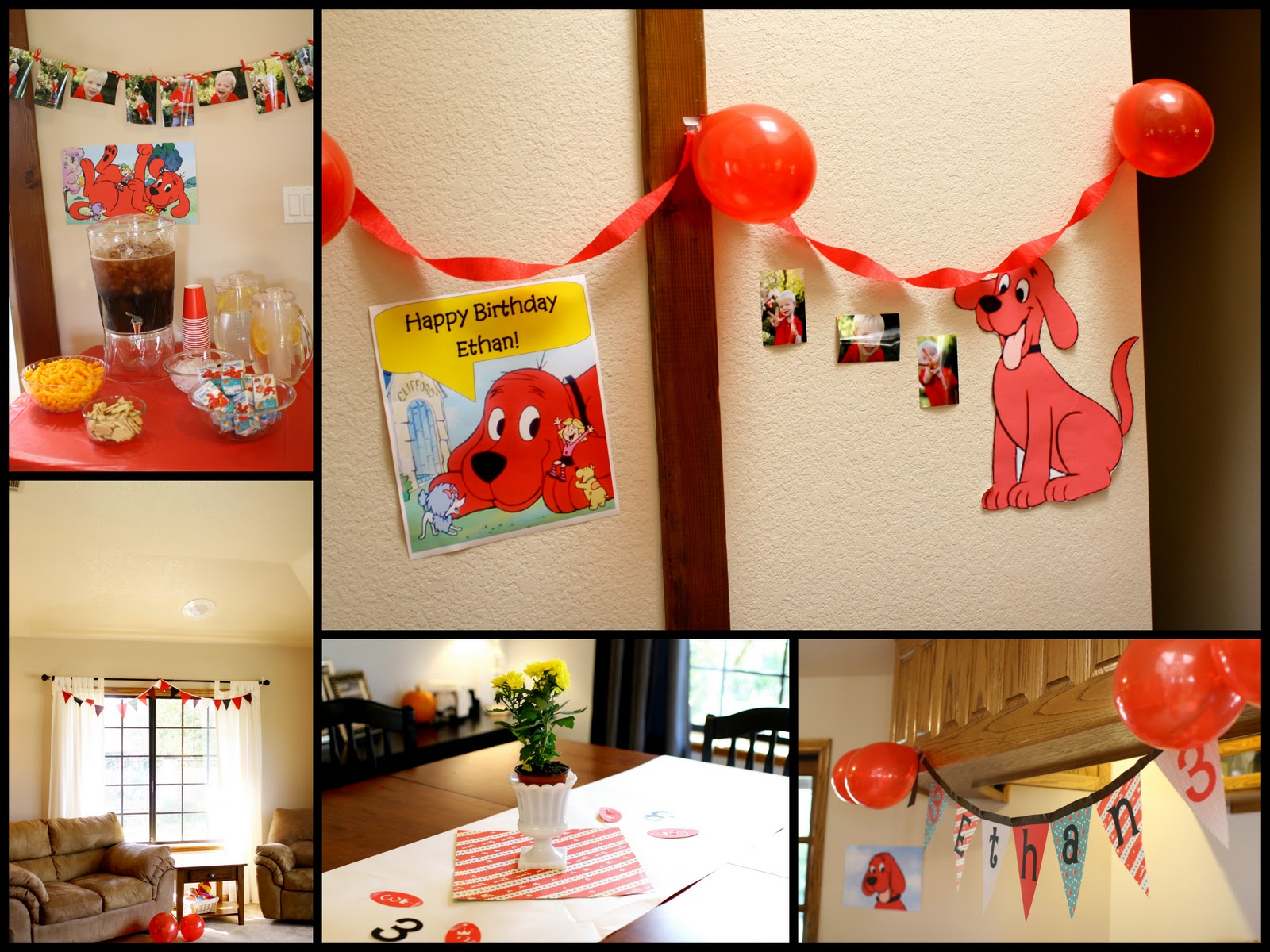 Ethans Big Red Clifford party