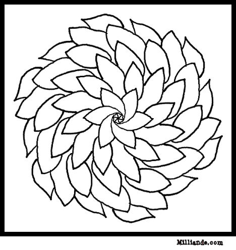 spring flower coloring pages collections