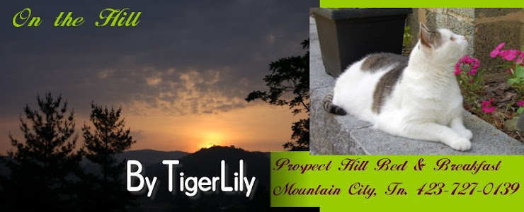 Enjoy a Prospect Hill  B&B (TN) Getaway