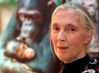 26 year old jane goodall