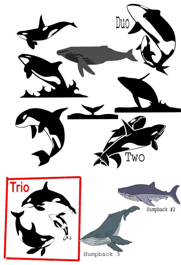 Mardenz: Orcas and Sperm Whales (9 files)