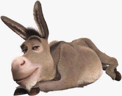 el burro com: