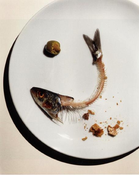 Fashionfaire fish mercury for Fish without mercury
