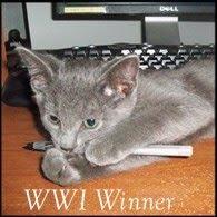 WWI Winner