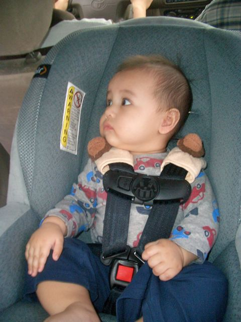Cool Mom\'s Blog: Safety 1st OnSide Air Convertible Car Seat Review