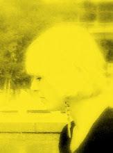 M.J. Huijben