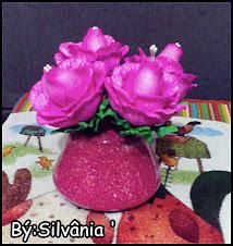 Rosas para uma rosa !!
