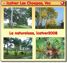 Icatver Choapas
