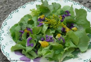 Salade fleurie à la pimprenelle