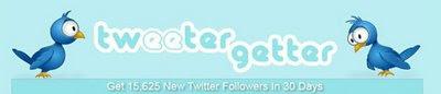 программа вирусного продвижения в Twitter - Tweetergetter