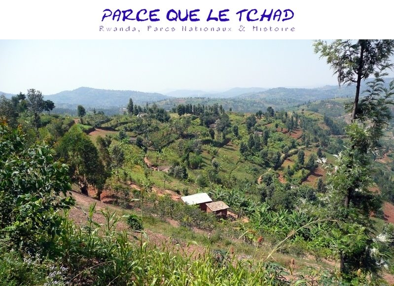 Parce Que Le Tchad - le film | RWANDA. PARCS NATIONAUX. HISTOIRE