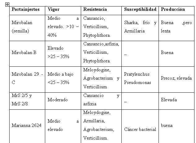 tabla principales porta injertos