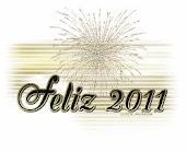 2011 COM MUITA PAZ