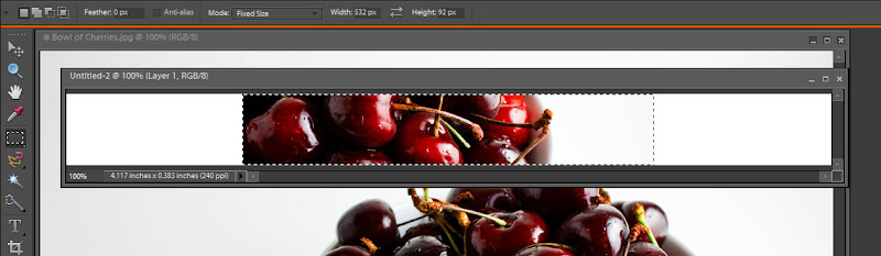 Bowl of Cherries - Header Image