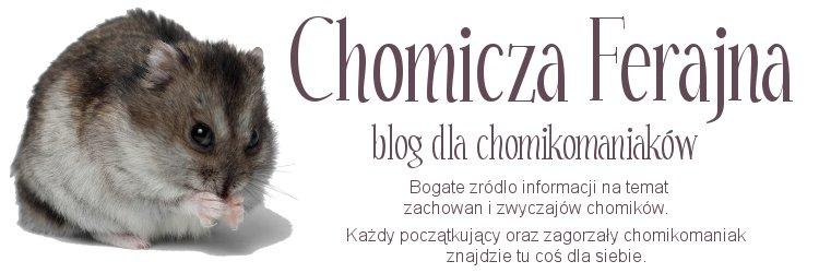 Chomicza Ferajna - blog dla chomikomaniaków