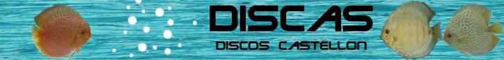DISCAS                Discos Castellon