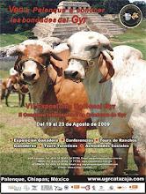 VII EXPOSICIÓN NACIONAL GYR & II CONGRESO INTERNACIONAL DE CRIADORES DE GYR